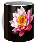 Waterlily On Pond Coffee Mug
