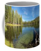 Waterlogged Coffee Mug