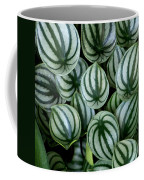 Watermelon Leaves Coffee Mug