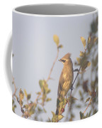 Wax Wing In Sunshine  Coffee Mug