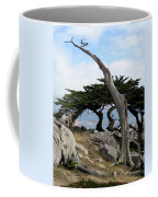 Weathered Tree On California Coast Coffee Mug