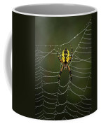 Weave Master Coffee Mug