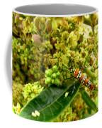 Webworm Moth Coffee Mug