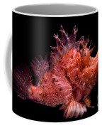 Weedy Scorpionfish Coffee Mug by Dante Fenolio