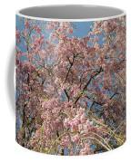 Weeping Cherry Tree In Bloom Coffee Mug