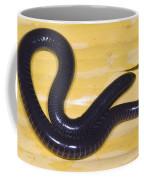 West African Caecilian Coffee Mug