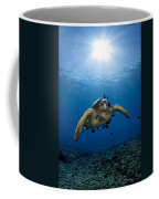 West Maui Sea Turtle Coffee Mug