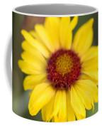Western Daisy Glacier National Park Coffee Mug