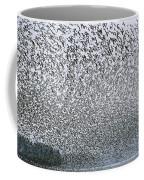 Western Sandpipers During Spring Coffee Mug