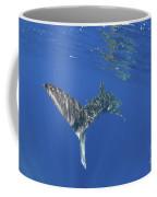 Whale Shark Tail Near Surface With Sun Coffee Mug