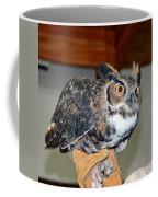 What A Hoot Coffee Mug