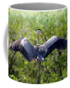 What A Wingspan Coffee Mug