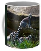 What Is That Coffee Mug