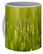 Wheat On The Field Coffee Mug