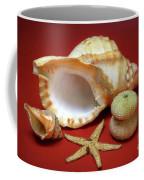 Whelks Coffee Mug by Carlos Caetano
