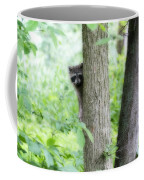 When Raccoon Dream Coffee Mug