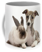 Whippet Pup With Colorpoint Rabbit Coffee Mug