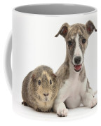 Whippet Pup With Guinea Pig Coffee Mug