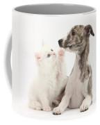Whippet Puppy And Kitten Coffee Mug