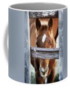 Whiskers 1 Coffee Mug