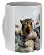 Whiskers The Name Coffee Mug