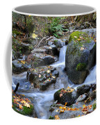 Whisketown Stream In Autumn Coffee Mug