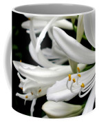 White Agapantha Coffee Mug