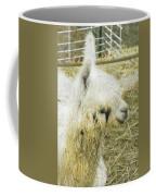 White Alpaca Photograph Coffee Mug