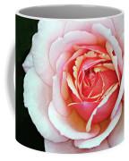 White And Pink Coffee Mug
