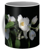 White Blossoms Coffee Mug