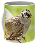 White Crowned Sparrow II Coffee Mug