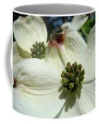 White Dogwood Flowers Art Prints Floral Coffee Mug