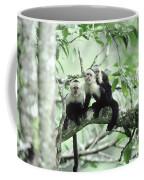 White-faced Capuchins Coffee Mug