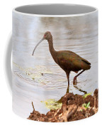 White-faced Ibis Coffee Mug