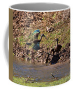 White-faced Ibis Mating Behavior In Early Spring Coffee Mug