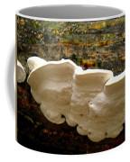 White Fungus Coffee Mug