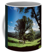 White Horse At Powerscourt, Co Wicklow Coffee Mug