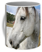 White Horse Closeup Coffee Mug