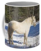 White Horse In Winter Maine Coffee Mug