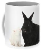 White Kitten And Black Rabbit Coffee Mug
