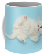 White Kitten Coffee Mug