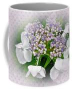 White Lace Cap Hydrangea Blossoms Coffee Mug