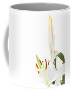 White Lillys And Background Coffee Mug