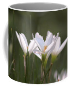 White Lily - Symbol Of Purity Coffee Mug