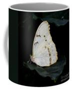 White Morpho Coffee Mug