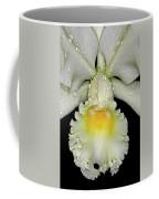 White Orchid Coffee Mug