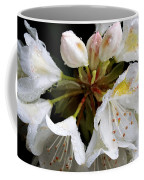 White Rhododendron Blooms  Coffee Mug