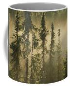 White Spruce In Mist At Sunrise Coffee Mug