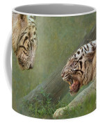 White Tiger Growling At Her Mate Coffee Mug