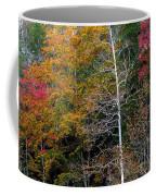 White Tree Fall Colors  Coffee Mug